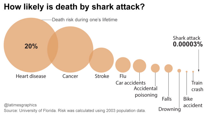 shark-attack-risk