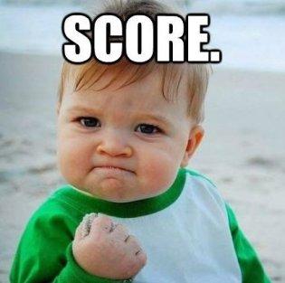 feature_score-1